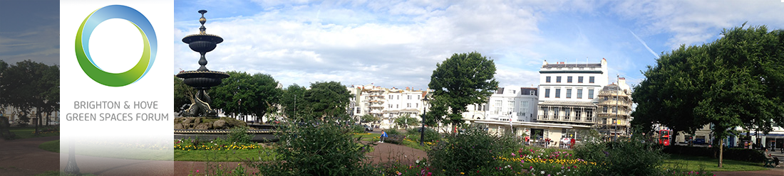 Brighton & Hove Green Spaces Forum